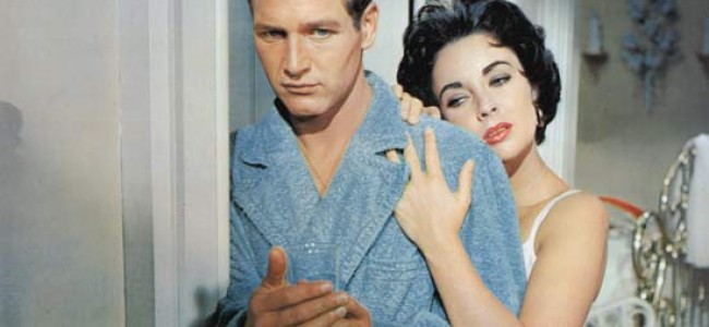 the most beautiful fraud  cat on a hot tin roof   leonard pierce    the most beautiful fraud  cat on a hot tin roof